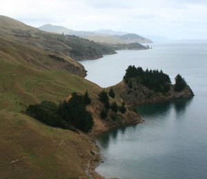 Marlborough Sound - Quelle: https://commons.wikimedia.org/wiki/File:Marlbourough_Sounds_Coast.jpg